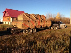 Product_hay_hauling